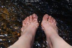 Cieki relaksuje w wodzie Fotografia Royalty Free