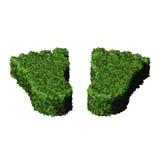 Cieki robić od zielonych liści odizolowywających na białym tle 3 d czynią Zdjęcia Royalty Free