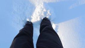 Cieki w śniegu w zimie zdjęcie royalty free