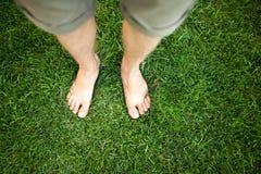 Cieki w trawie Obrazy Stock