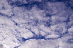 Ciel égalisant bleu avec des nuages, cumulus Fond, nature photographie stock libre de droits