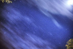 Ciel étoilé d'une nuit d'été Images libres de droits