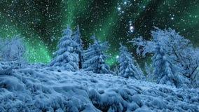 Ciel étoilé et lumières du nord banque de vidéos