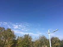 Ciel, arbres, nuages Photo stock