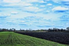 Ciel avec des nuages au-dessus des champs verts et noirs Photographie stock libre de droits
