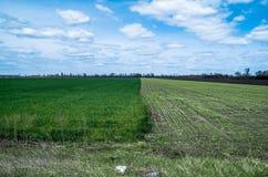 Ciel avec des nuages au-dessus des champs verts et noirs Image stock