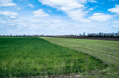 Ciel avec des nuages au-dessus des champs verts et noirs Image libre de droits