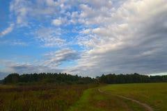 Ciel avec des nuages Cumulus de champ et de forêt photos libres de droits