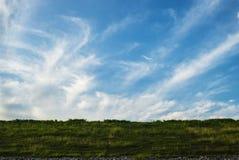 Ciel avec l'herbe images stock