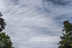 Ciel avec les nuages et le bord légers d'arbres du cadre Image libre de droits
