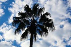 Ciel bleu à Sydney Image stock