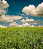 Ciel bleu Photos stock