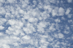 Ciel bleu avec beaucoup de petits nuages pelucheux Images libres de droits