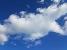 Ciel bleu avec les cumulus pelucheux blancs image libre de droits