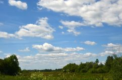 Ciel bleu avec les nuages et le champ blancs Photographie stock libre de droits