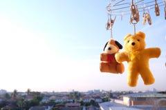 Ciel bleu d'ours de nounours pendant le matin Photos stock