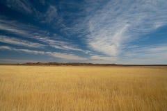 Ciel bleu dans le désert image libre de droits