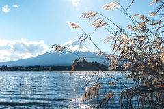 Ciel bleu de Fuji Photos libres de droits