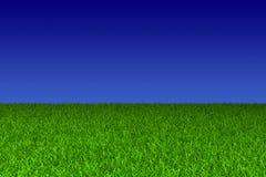 Ciel bleu et herbe verte Image stock