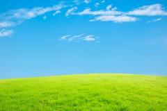 Ciel bleu et nuages et herbe blancs Photographie stock libre de droits