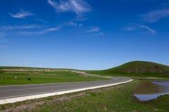 Ciel bleu et prairie Image stock