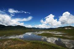 ciel bleu et prairie Photos stock