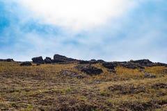 Ciel bleu et terre verte images stock