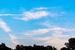 Ciel bleu gentil avec quelques nuages et oiseaux de vol images libres de droits