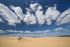 Ciel bleu gentil dans les dunes en parc le Hoge Veluwe photographie stock libre de droits
