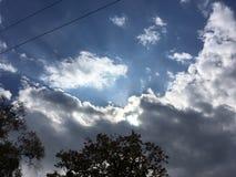 ciel Bleu-gris, le soleil par les nuages Arbres, fils Images libres de droits