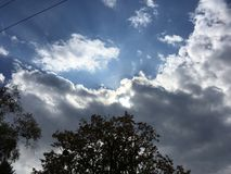 ciel Bleu-gris, le soleil par les nuages Arbres, fils Images stock
