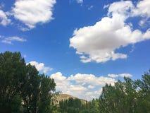 Ciel bleu, nuages et arbres Photographie stock