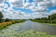 Ciel bleu nuageux au-dessus d'un canal néerlandais de polder avec des plantes aquatiques images stock