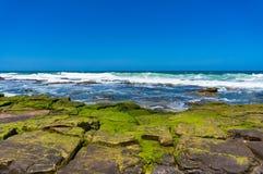 Ciel bleu, océan clair et roche couverts d'algues, mousse Image libre de droits