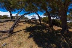 Ciel bleu par des arbres chez Maido à St Paul, Reunion Island Photographie stock libre de droits