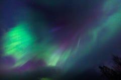 Ciel coloré de lumières du nord en Norvège Photo stock