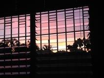 Ciel complètement de lever de soleil pourpre Photos libres de droits
