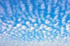 Ciel d'été photo libre de droits