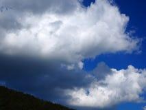Ciel d'été avec le cumulus au-dessus de la forêt photographie stock