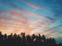 Ciel d'après-midi Photographie stock libre de droits
