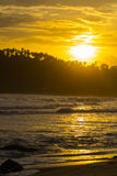 Ciel d'or au coucher du soleil sur la plage tropicale de désert Photos stock