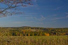Ciel d'automne de staw de vert d'herbe de forêt de vert du feu de forêt de nature photos stock