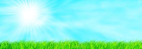 ciel d'herbe Images libres de droits