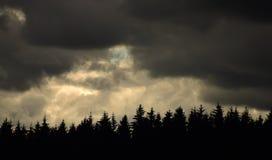 Ciel d'obscurité d'hiver Image stock