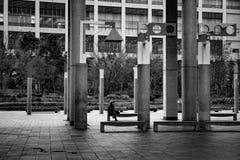 Ciel d'Umeda construisant Osaka Japan photographie stock