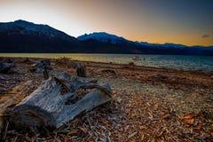 Ciel de beau paysage et tronçon d'arbre de coupe et wankak sombres images libres de droits