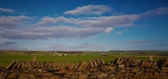 Ciel de Ble et beau pâturage de moutons photo stock
