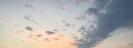 Ciel de coucher du soleil d'été Photographie stock libre de droits