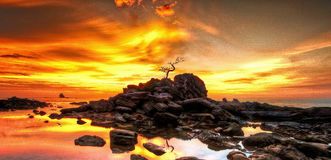 Ciel de coucher du soleil d'aube Photographie stock