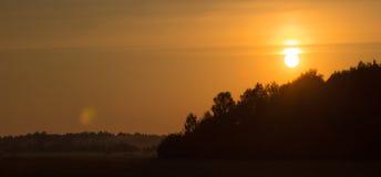 Ciel de coucher du soleil dans les domaines près d'une forêt Photo libre de droits